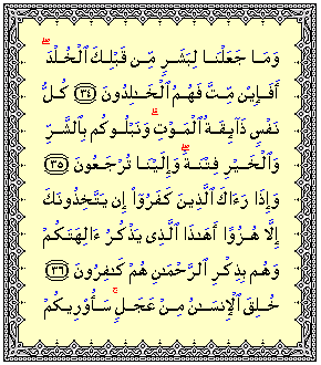 قرآن11